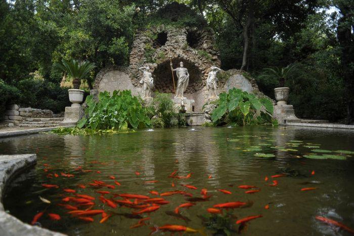 Dubrovnik | Arboretum Trsteno Sadnice